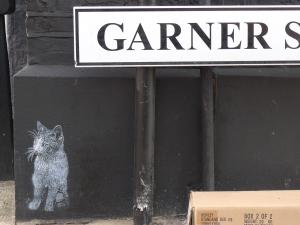 garner street cat